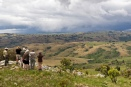 Surveying the rolling grasslands of Nyika Plateau, Malawi