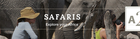 A2A Safaris
